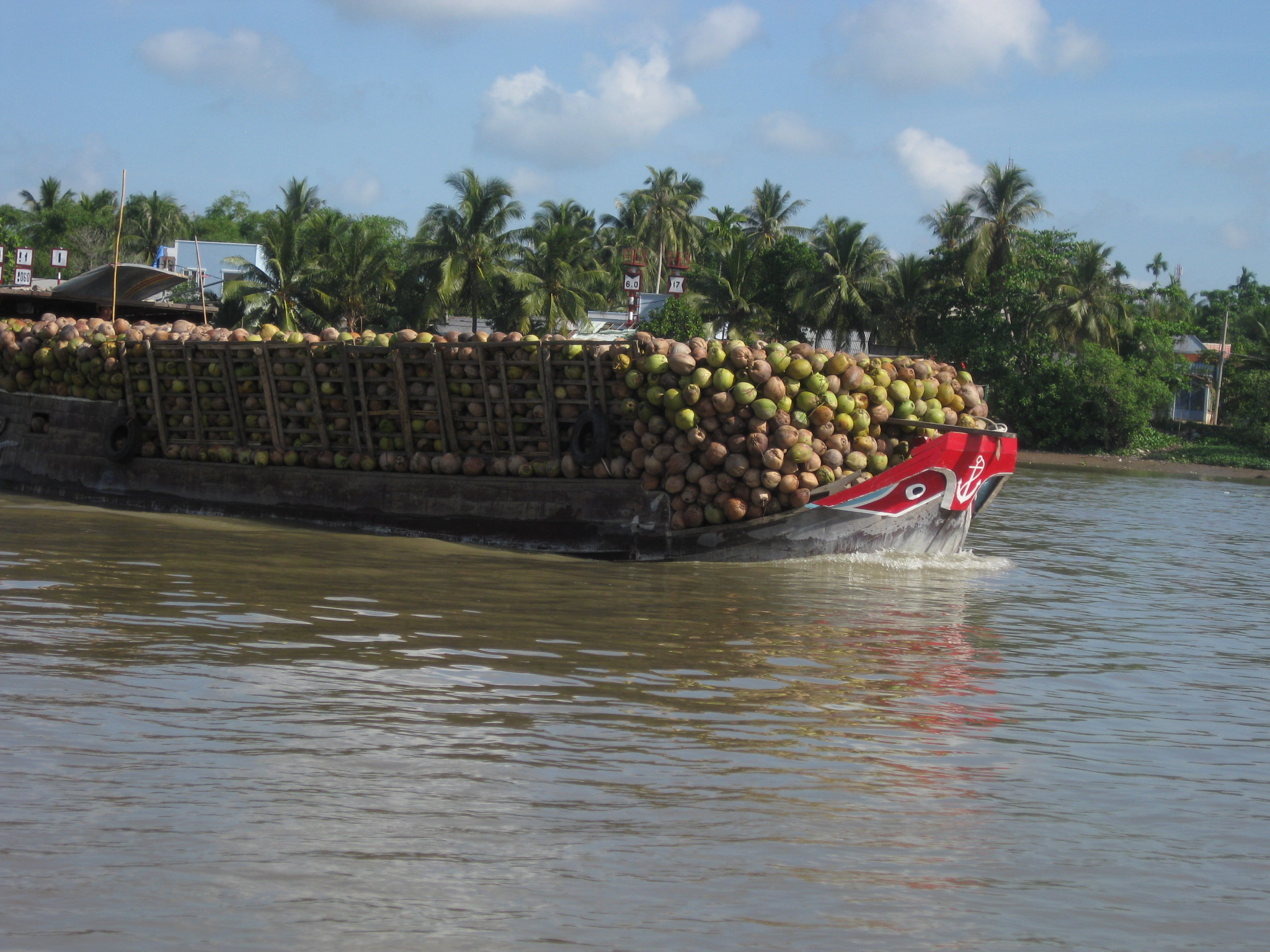 Mekong delta and Chau Doc tour 3 days - Sunshine Travel